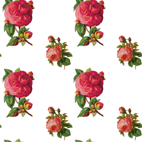 Заливки для photoshop - Винтажные розы на прозрачном фоне